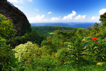 Beautiful views of Maui North coast seen from famous winding Road to Hana. Hawaii