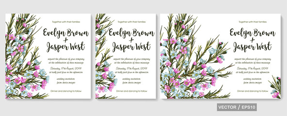 Wedding invite, invitation, rsvp, save the date card design with elegant  pink and blue wax flowers (chamaelaucium), branches leaves. Vector set