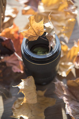 Lens for the camera on the table in dry leaves in sunlight.