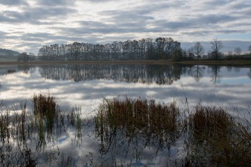 Clouds and trees mirroring the pond Ulehle in southern Bohemia, Czech Republic, Europe