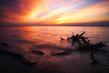 Beautiful spring landscape with sea coast, colorful sunset sky and log or snag.