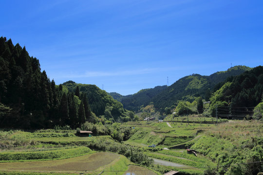 Typical lural landscape in Japan called Satoyama