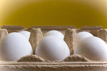 Chicken eggs in a tray