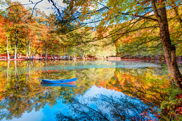 Autumn landscape in (seven lakes) Yedigoller Park Bolu, Turkey