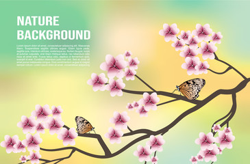Vector nature background with tree blossom and two orange butterfly