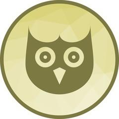 Owl Face icon