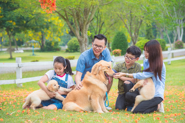 Asian family with dogs sitting at park in spring season