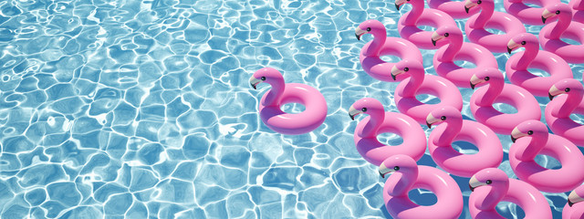 3D rendering. a lot of flamingo floats in a pool Fotomurales