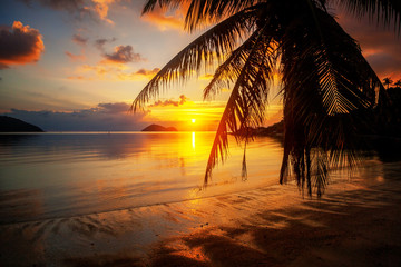 Fototapete - Beautiful bright colorful stunning sunset on a tropical beach on a paradise island