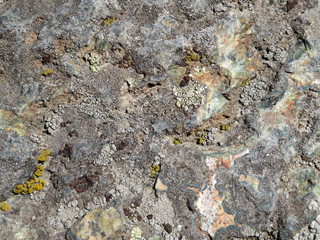 Old stone covered with lichen and moss. Rock stone texture background