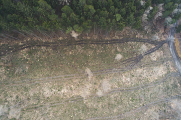 aerial drone flight with copter over deforested forest in austria in march