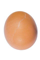 Chicken egg with a transverse crack