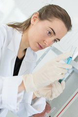 young female researcher loads samples for pcr testing