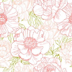 Hand drawn peonies. Vector seamless  pattern.