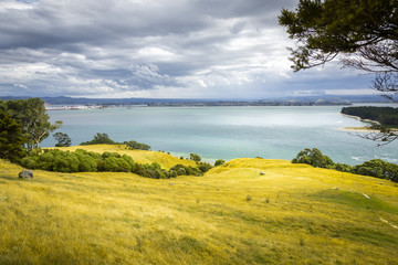 view from Mount Maunganui New Zealand