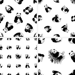 Set of seamless patterns of hand drawn sketch style giant pandas isolated on white background. Vector illustration.