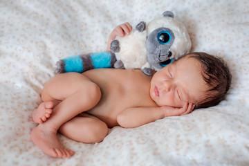 Fototapeta Newborn boy is sleeping with toy