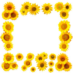 Collection of flowers sunflower frame with place for text isolated on white background