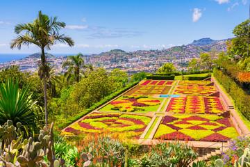 Botanical garden in Funchal, Madeira island, Portugal Fototapete