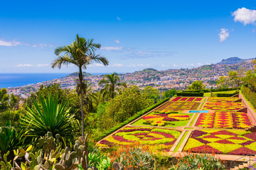 Botanical garden in Funchal, Madeira island, Portugal