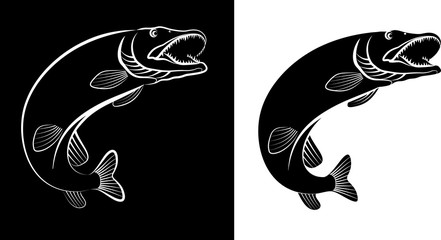 pike fish - clip art illustration