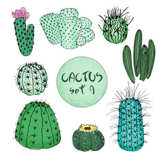 Set of colored cactuses, hand drawn vector illustration. outline sketch. Succulent collection.