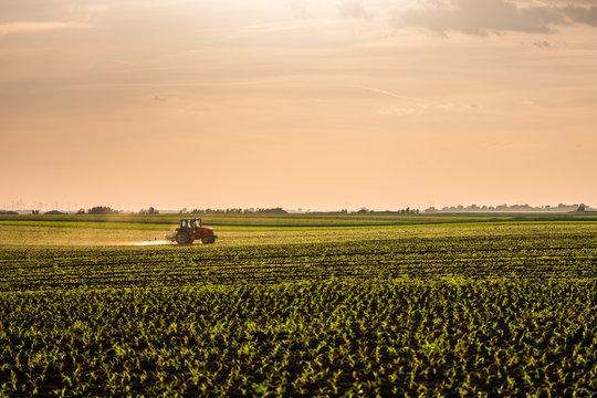 Farmer spraying soybean crops