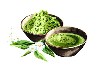 Organic green Matcha tea. Watercolor hand drawn illustration,  isolated on white background