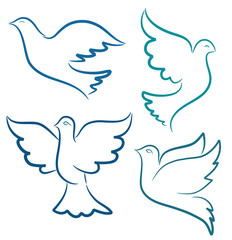 Vector illustration silhouette of flying dove