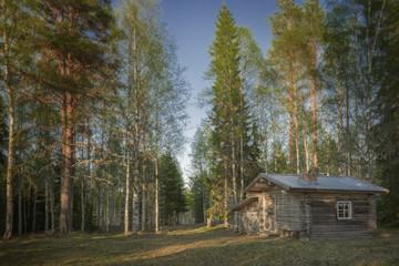Log Cabin in a swedish forest