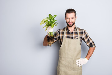 Portrait with copy space, empty place of attractive handsome florist with stubble  having, showing, demonstrate house plant with soil looking at camera isolated on grey background