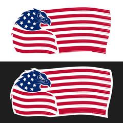 USA flag with eagle