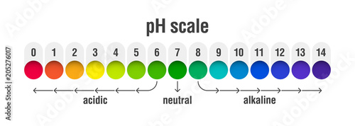 Ph Value Scale Chart For Acid And Alkaline Solutions Base Balance Infographic