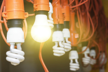 Photo of hanging light bulbs with depth of field. One light shines. Concept of leadership.