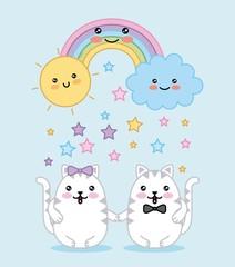 kawaii couple cats rainbow cloud sun cartoon vector illustration