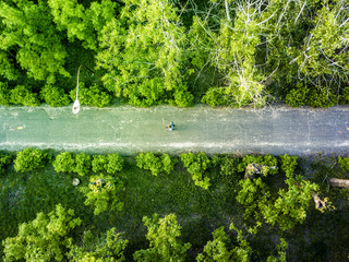 aerial top view of lonely man walking in the summer forest on the road