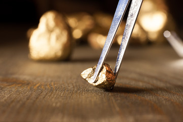 checking golden nuggets with tweezers