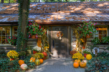 Thanksgiving Display on Country Door Wall mural