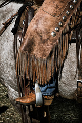 APRIL 22, 2017, RIDGWAY COLORADO: American Cowboy during cattle branding exchange words, at Centennial Ranch, Ridgway, Colorado- a cattle ranch owned by Vince Kotny