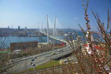 the bridge across the Bay, in the port city. sunny day and flourishing greenery