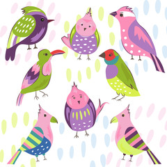 Cartoon collection of beautiful exotic tropical birds vector parrot, amadina. Doodle birds bright pink, red, green, blue, purple.