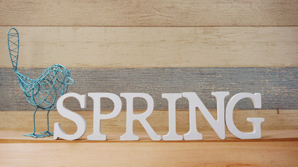 spring alphabet letter with space background