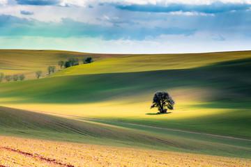 Moravian Tuscany – beautiful landscape in south Moravia near Kyjov town, Czech Republic