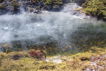 volcanic lake at waimangu