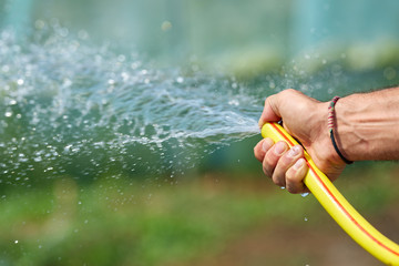 Farmer watering the plants
