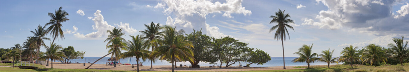 Scenic view of beach and palm trees, Playita Junco Sur, Cienfuegos, Cuba