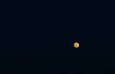Full yellow moon on the dark sky background