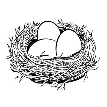 Nest with golden egg coloring vector illustration