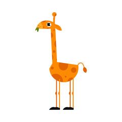 Cute giraffe cartoon character with long neck standing and eating leaves isolated on white background. Side view of funny comic yellow african animal with spots, vector illustration.