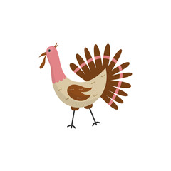 Flat funny turkey domestic bird icon. Thanksgivind day holiday symbol, poultry bird with beak, feathers. Cute rural animal used for meat. Vector hand drawn isolated illustration